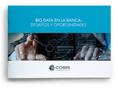 Whitepaper Big Data Junio 2018